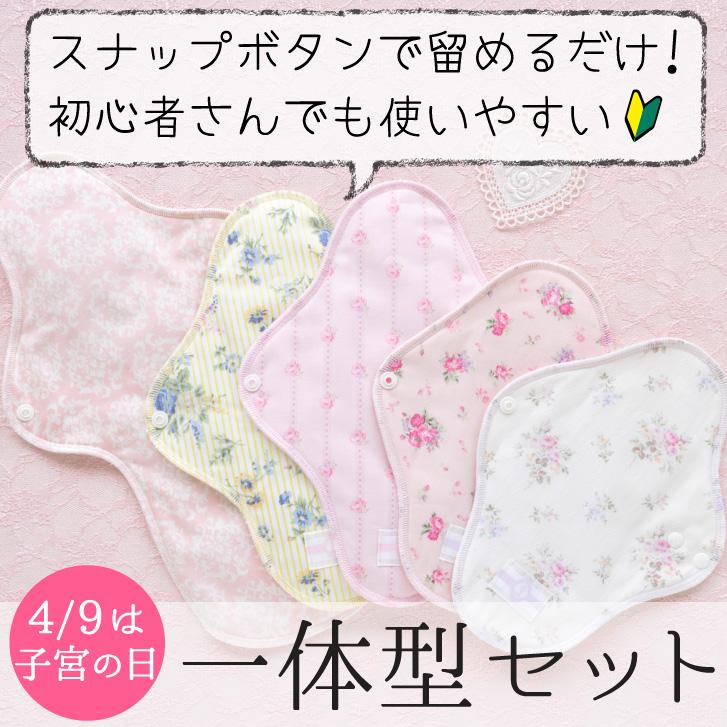 布ナプキン一体型5枚セット