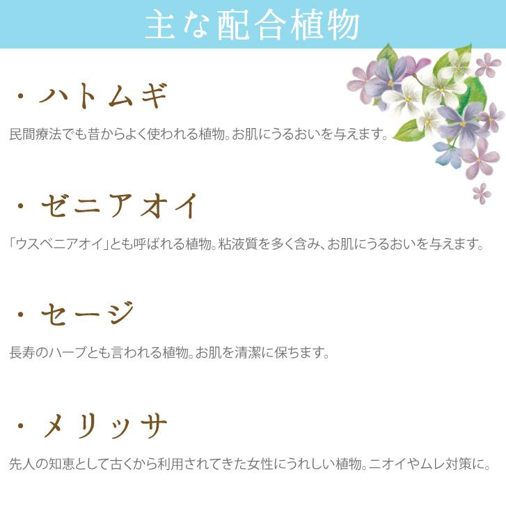 主な配合植物 ハトムギ ゼニアオイ セージ メリッサ