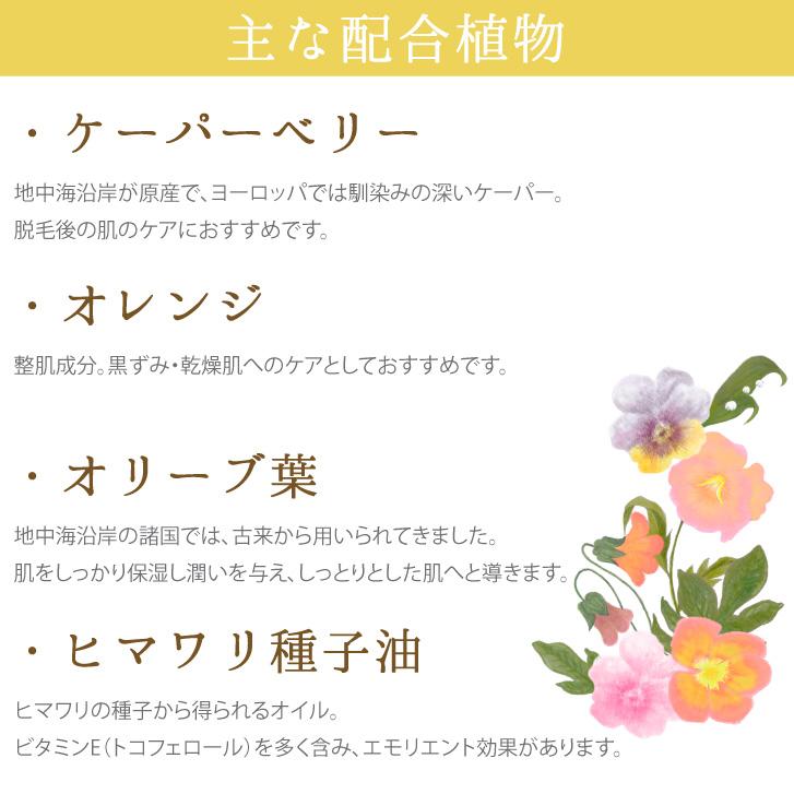主な配合植物 ケーパーベリー オレンジ オリーブ葉 ヒマワリ種子油